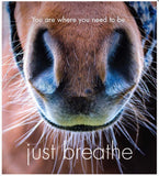 Little book of Heavenly Horses - By Affirmations - Page reads: You are where you need to be Just breath. Photo of horses nostrils