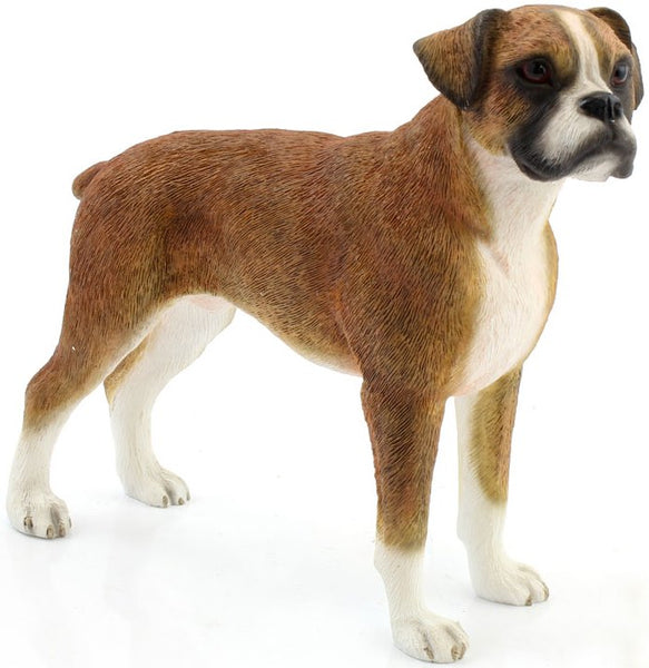 Leonardo Collection - Dog -  Boxer