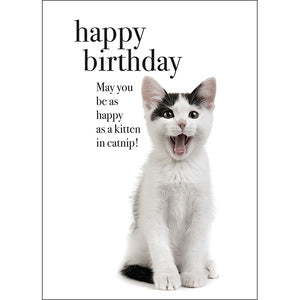 Affirmation Card - Beautiful presented card  Happy Birthday - May you be as happy as a kitten in catnip!  Inside Verse - Meow!
