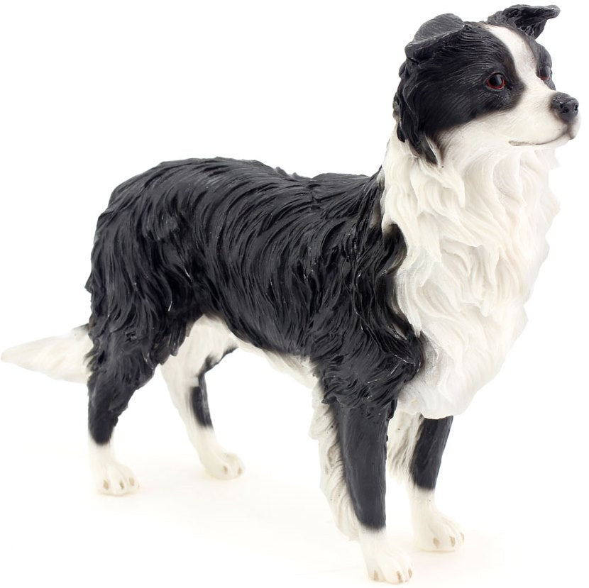 Leonardo Collection - Dog Border Collie - Standing