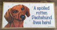 Sign with an image: A spoiled rotten Dachshund lives here! (red colour)
