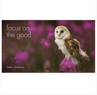 Little book of Old Wisdom - By Affirmations - Page reads Focus on the good - today I choose joy!