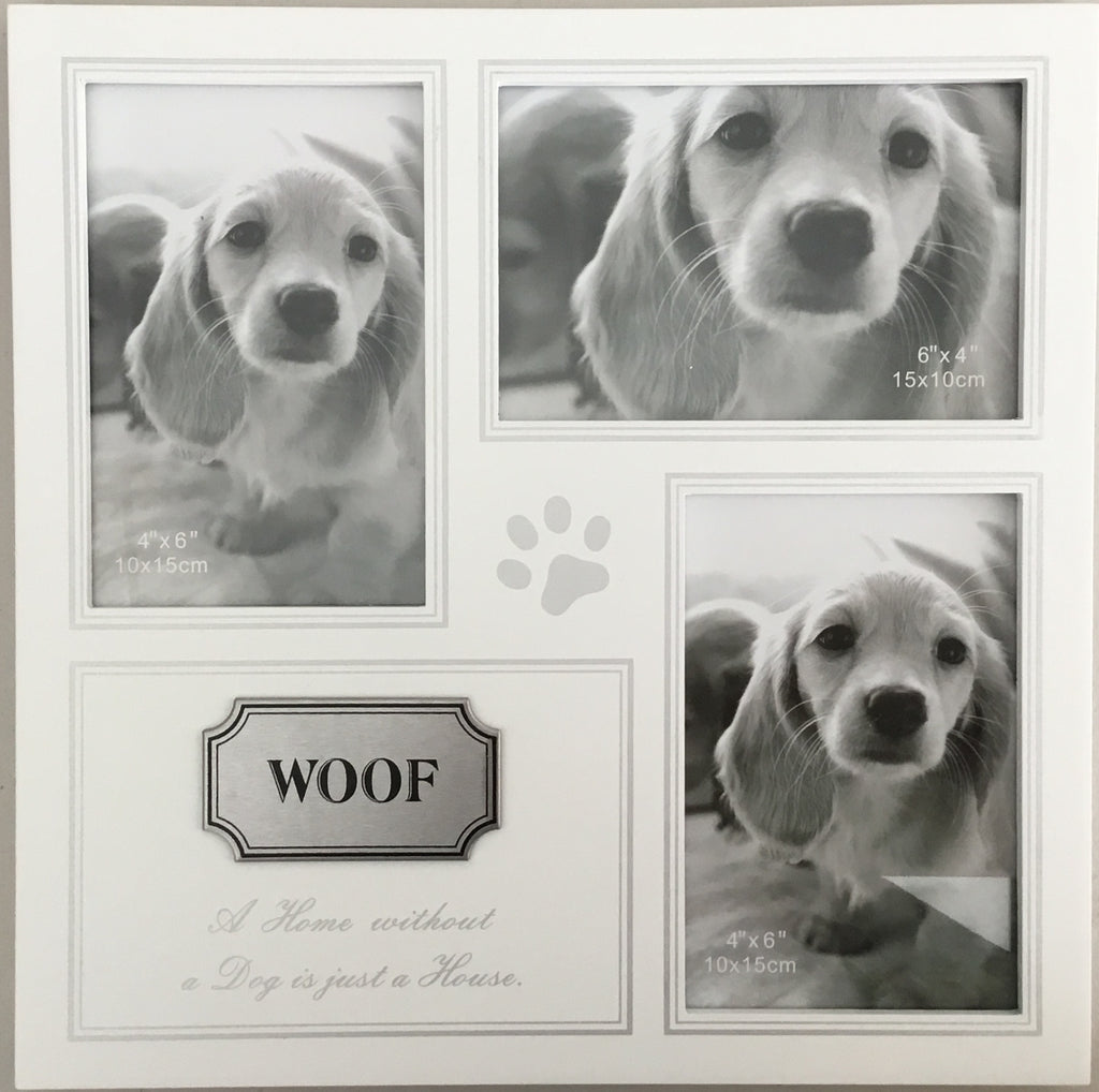 Dog WOOF Window Frame