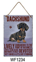 Dachshund Metal Dog breed signs.  Lovely bright colours signs with each breeds personality traits listed below. Size is 20cm x 27cm each sign.