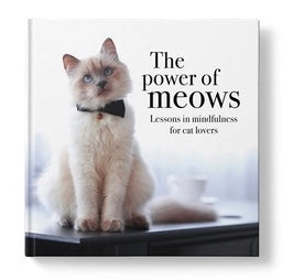 Fantastic gift for the cat lover. The Power of Meows offers playful perspective and insight, with a dash of purr-fection.