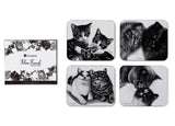 Feline Friends Coasters also available