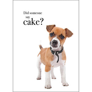 Affirmation Card - Did someone say Cake?