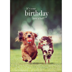 Affirmation Cards - It's your Birthday - Have a Ball!