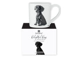 Beautiful Delight dog range by Ashdene in monochrome colours. 12 delightful dogs available. Dachshund