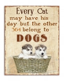 Every Cat may have his day but the other 364 days belong to the DOG.S