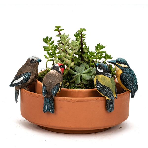 Fun and quirky Finch Pot sitter, each pot sitter is 5 cm x 5cm x 12 cm. Sold Separately