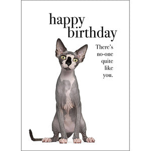 Affirmations Card - Happy Birthday - There's no one quiet like you.