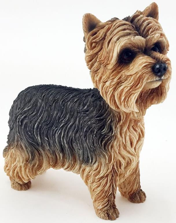 Leonardo Collection - Yorkshire Terrier