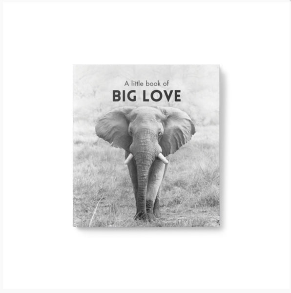 A Little book of BIG LOVE - by Affirmations - Starts with words - From a small seed a might trunk may grow