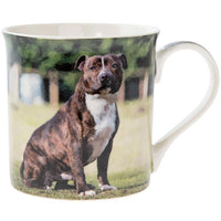 Staffy - Brindle and white - dog mug