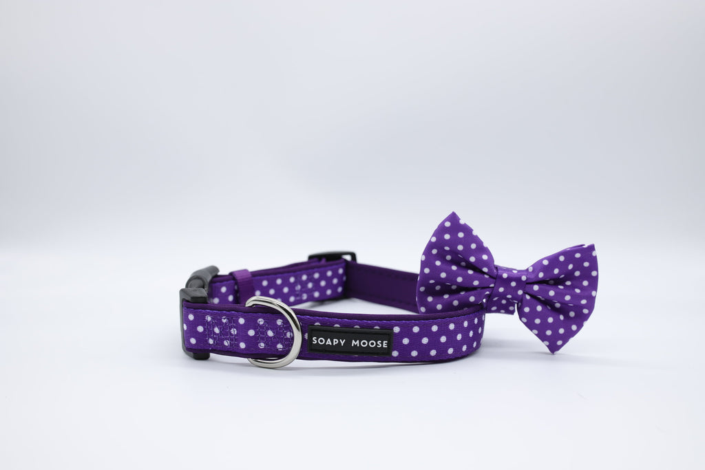 Purple & White Polka Dot Collars & Bow Tie by Soapy Moose