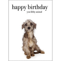 Affirmation Card - Beautiful presented card.  Happy Birthday - You filthy animal!  Inside Verse - I lick you!