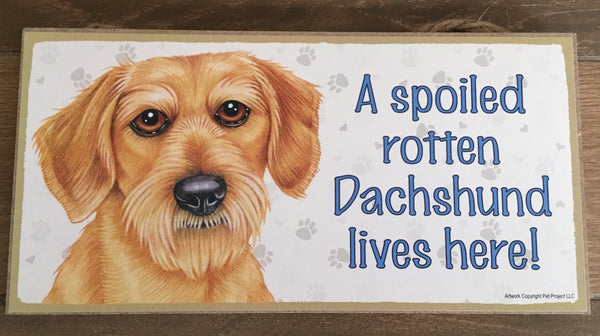 Sign with an image: A spoiled rotten Dachshund lives here! (wire haired)