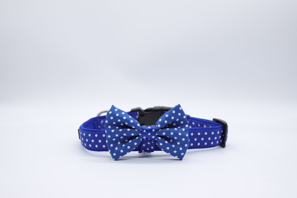Soapy Moose Blue and White Polka dot Dog Collars with removable Bow Tie