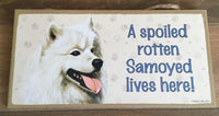 Sign and image - A spoiled rotten Samoyed lives here!