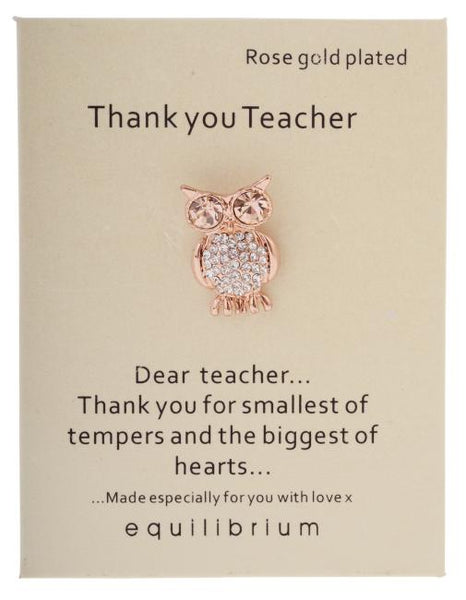 Equilibrium Thank you teacher pin. Roast gold plated. In an owl shape with cubic zirconia.  Saying: Dear teacher... thank you smallest of tempers and the biggest of hearts....  Made especially for you with love xx