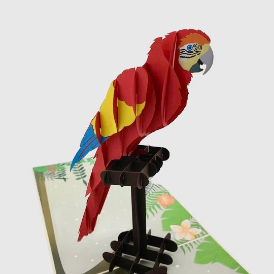 Parrot - Beautifully created Pop Up cards created to to make any gift memorable. Each card is designed and meticulously handcrafted into 3d pop up cards for all occasions.
