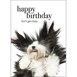 Affirmation Card - Beautiful presented card  Happy Birthday - Lets go Crazy!  Inside Verse - Let you hair down!