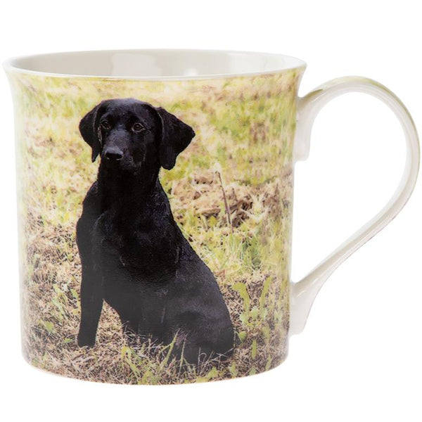 Black Lab in a field dog mug.