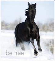 Little book of Heavenly Horses - By Affirmations - Page reads: Be Free - photos a horse running through water
