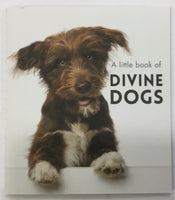 Little book of Divine Dogs - By Affirmations - Page reads