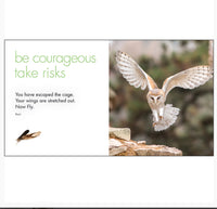 Little book of Old Wisdom - By Affirmations - Page reads Be courageous take risks. you have escaped the cage. your wings are stretched out. Now Fly