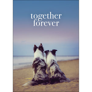 Affirmation Cards - Together Forever