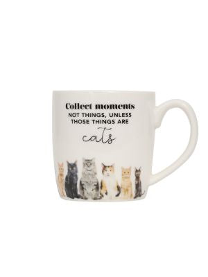 Playful Pets Mugs - Saying - Collect moments not things, unless those things are cats!