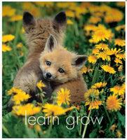Little book of Baby Wonder - By Affirmations - page reads Learn Grow