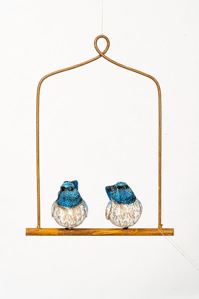 2 Blue Fairy Wrens on a Metal Rod with Wire Frame.