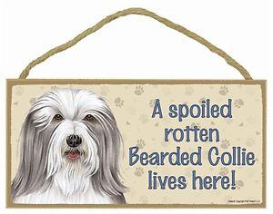 Sign with an image: A spoiled rotten Bearded Collie lives here!