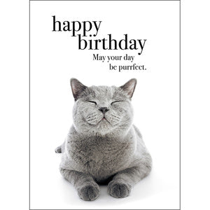 Affirmations card - Happy Birthday - Happy Birthday - May your Day be Purrrfect