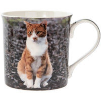 Ginger and white cat mug
