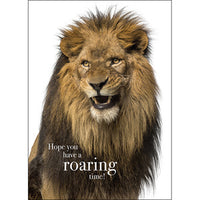 Affirmation Card - Beautiful presented card  Hope you have a roaring time!  Inside Verse - It's time for a new adventure!