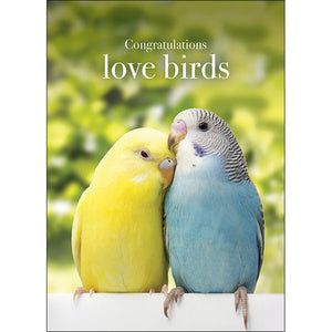 Affirmations Card - Congratulations Love Birds