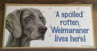 Sign and image - A spoiled rotten Weimaraner lives here!