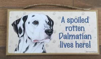 Sign with an image: A spoiled rotten Dalmatian lives here!