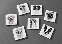 Beautifully made Delightful Dog Coasters. Made with a ceramic top and a cork base. 12 designs Size: L10cm x W10cm x H0.8cm