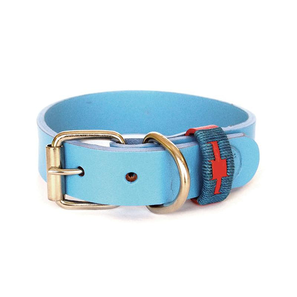 Sky Blue Collar with Embroidery trim  made from Buffalo Leather - not only smart but strong, supple and will last a lot longer for all dogs that are in and out of the water.  Each collar has 5 holes. Created by Georgie Paws