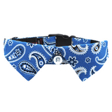 Blue Paisley Dog Shirt Collar