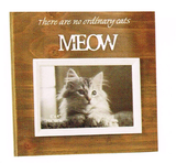Photo Frame wood - There are no ordinary dog/cat