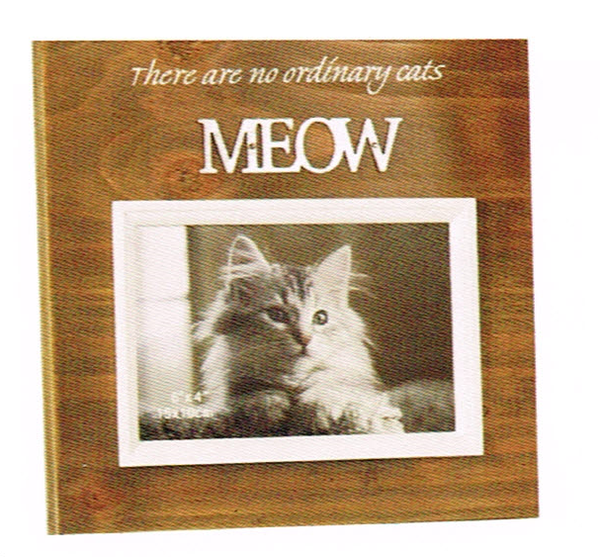 Wood Framed photo frame for Cats- Saying There are no ordinary Cats MEOW. White frame around photo area - 10cm x 15cm