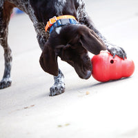 KONG Wobbler in play - for action packed food - dispensing toy that provides mental stimulation