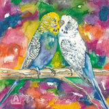 Small Gift Cards - Budgies