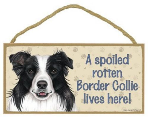 Plaque - A spoiled rotten Border Collie lives here! Paw embossed